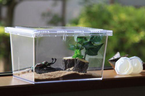 送料無料【昆虫飼育ケース】クリアースライダー[シーラケース]