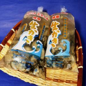 むき身!能登中島名産牡蠣 500g【牡蠣鍋 カキフライ 酢がき 他 いろいろ】