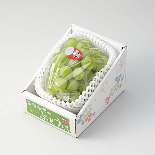 ぶどう 桃太郎ぶどう 赤秀 約600g×1房 岡山県産 香川県産 お中元 葡萄 ブドウ
