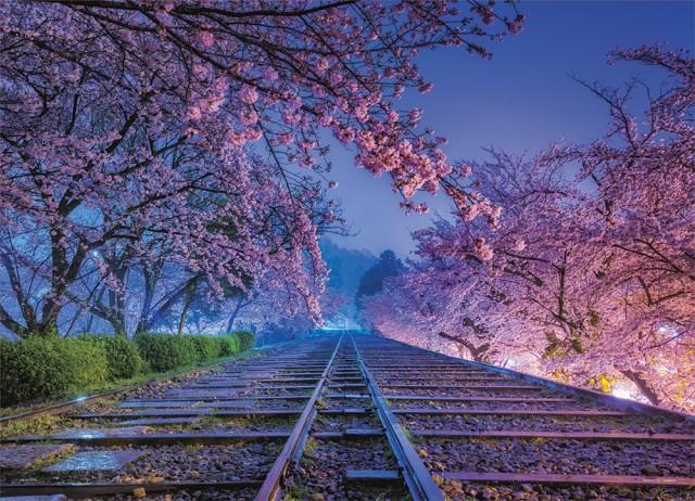 夢の軌道(京都) ジグソーパズル 風景 500ピース 38×53cm