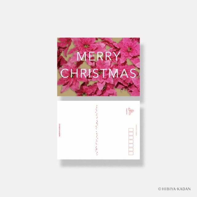 ダイゴー 日比谷花壇 クリスマスカード typography-02 Princettia ポストカード グリーティングカード