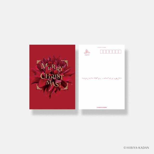 ダイゴー 日比谷花壇 クリスマスカード typography-03 Dahlia ポストカード グリーティングカード