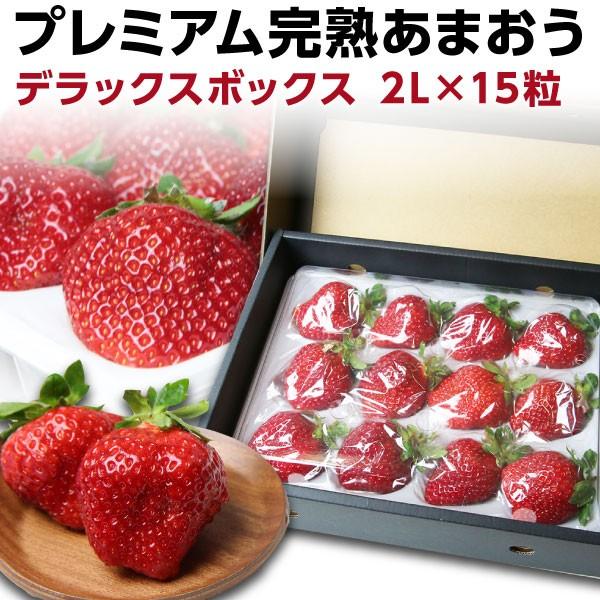 あまおう ギフト 福岡産 プレミアム 大粒 完熟 あまおう400g以上×1箱/ いちご 苺 農家直送