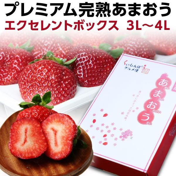 お歳暮 ギフト あまおう ex ポイント10倍 福岡産 プレミアム 大粒完熟 9〜12粒 いちご 苺 イチゴ 農家直送