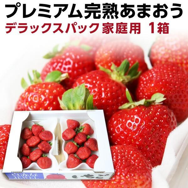 あまおう 福岡産 完熟あまおう280g以上×2パック いちご 苺 ご家庭用 農家直送 デラックスパック 1箱