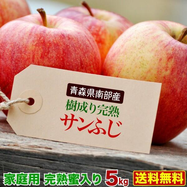 りんご サンふじ 訳あり5kg 青森県南部産 樹成り完熟 ご家庭用 送料無料 グルメ