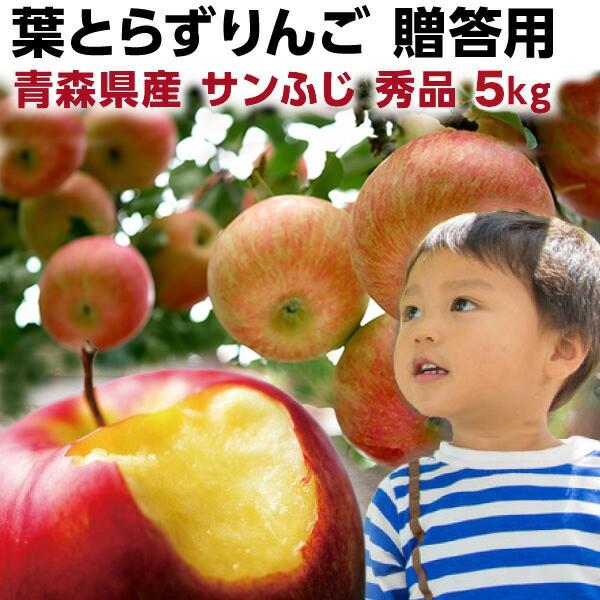 りんご 青森 葉とらず サンふじ 贈答用 5kg(18〜20玉) ギフト お歳暮 プチギフト フルーツ 秀品 送料無料 産直 世界が認めた リンゴ