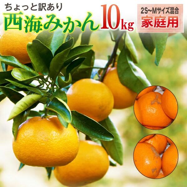 西海みかん 長崎 早生 温州ミカン 家庭用 8kg 送料無料 産直 甘い蜜柑 500g保証 サイズが選べる