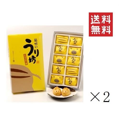【まとめ買い】 箱根のうり坊(ミルクバター餡饅頭)×2箱 送料無料