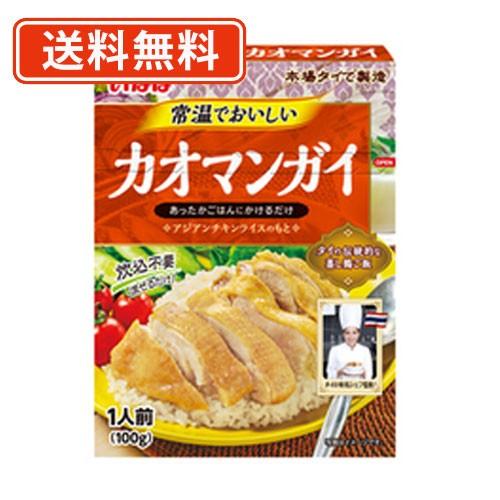 【送料無料(一部地域を除く)】いなば食品 常温でおいしい カオマンガイ 100g×30個 カオマンガイ