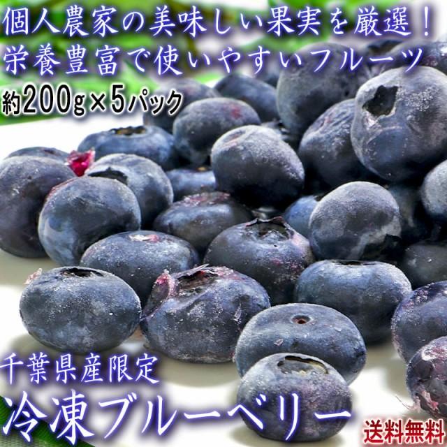 冷凍ブルーベリー 千葉県産 約200g×5パック入り 栄養豊富な果実を厳選!様々な料理に使えるお得なフルーツ