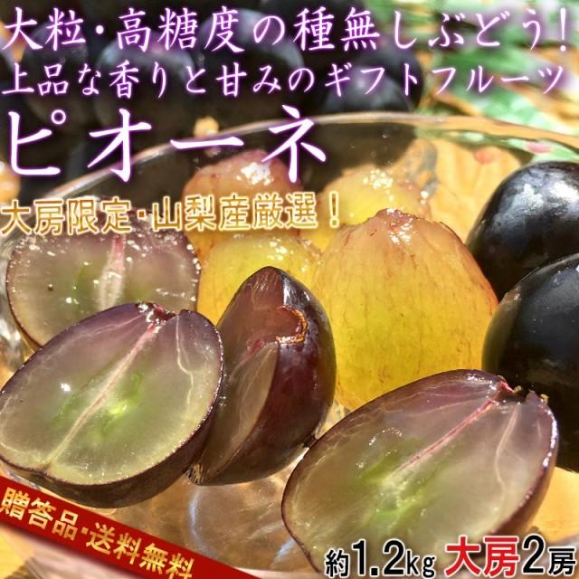 ピオーネ 大房サイズ 種無し葡萄 約1.2kg 2房 贈答規格 山梨県産 ギフト最適な大房・大粒の高糖度ブドウ!
