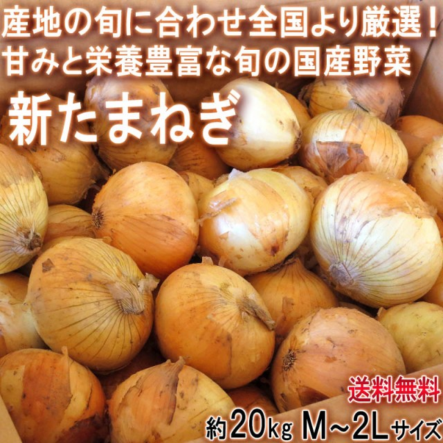 新たまねぎ 玉葱 約20kg M〜2Lサイズ 佐賀県産中心 大容量のお得な国産野菜!新鮮な旬の味をお届け
