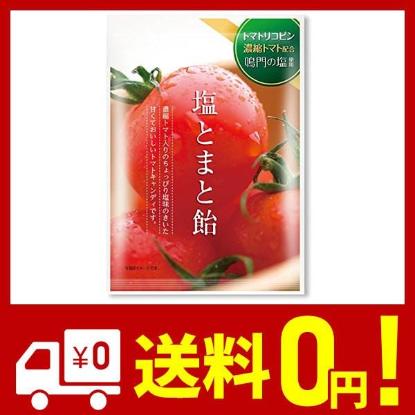 加藤製菓 塩とまと飴 100g×10袋