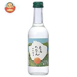 送料無料 【2ケースセット】 友桝飲料 タンカンサイダー 245ml瓶×24本入×(2ケース)