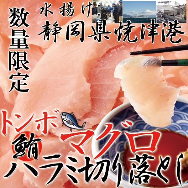 【送料無料】【同梱不可】静岡県焼津港で水揚げされた本場のマグロ 【訳あり】トンボマグロハラミ切り落とし500g (NK00000024)