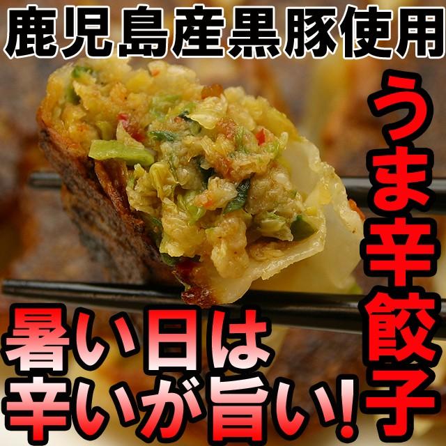 【送料無料】【鹿児島産黒豚使用】うま辛餃子☆ビールに合う最高の餃子が登場!