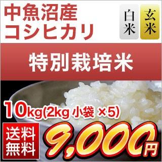 令和元年産(2019年) 新潟県中魚沼産 コシヒカリ〈特A評価〉10kg(2kg×5袋)【特別栽培米】【送料無料】【白米・玄米 選択】