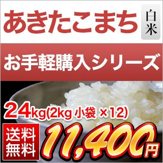 令和2年(2020年) 新米 埼玉県産 あきたこまち 白米 24kg(2kg×12袋)【送料無料】【米袋は真空包装】