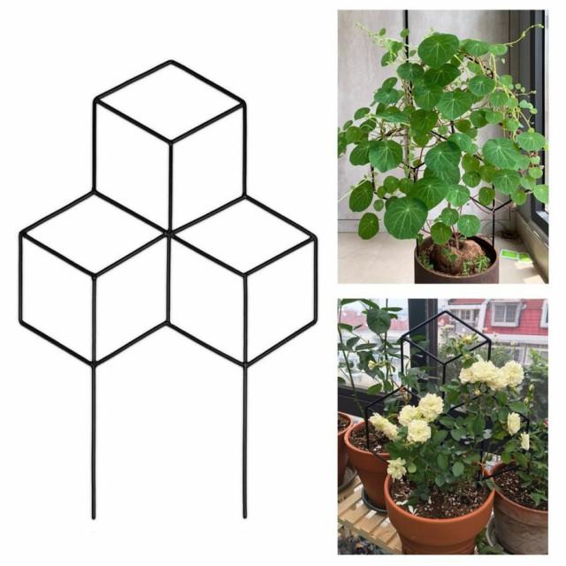金属 の 庭 のためのトレリス 植物 クライミング 装飾鉢植 えサポートステークス 植物花野菜 ローズつるエンドウアイ
