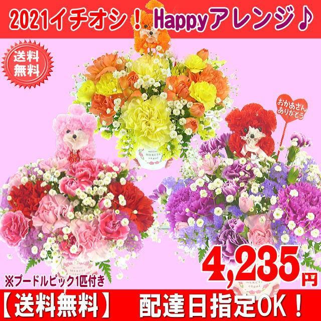 母の日 2021 カーネーション Happyアレンジ4 235円【送料無料】【プードルピック1匹付き!】ネット特価!