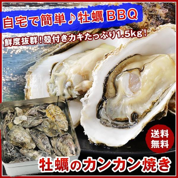 【送料無料】牡蠣のカンカン焼き 殻付きマガキたっぷり1.5kg!《※冷凍便》BBQ/バーベキュー のし対応可能