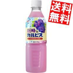 【送料無料】カルピス 巨峰&カルピス 500mlペットボトル 24本入 (ぶどうカルピス)