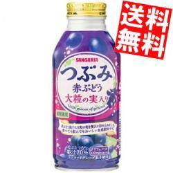 【送料無料】サンガリア つぶみ赤ぶどう 380gボトル缶 24本入