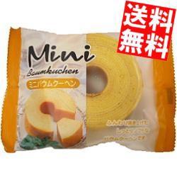 【送料無料】タイヨーフーズ ミニバウムクーヘン 12個入[のしOK]big_dr