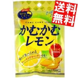【送料無料】三菱食品 かむかむレモン 10入[のしOK]big_dr