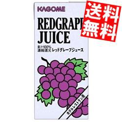 【送料無料】カゴメ レッドグレープジュース (ホテルレストラン用) 1L紙パック 12(6×2)本入[のしOK]big_dr