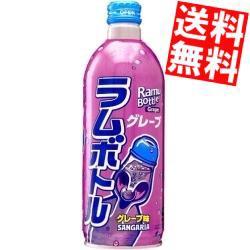【送料無料】サンガリア グレープラムボトル 500gボトル缶 24本入[のしOK]big_dr