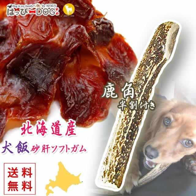 ドッグフード 犬飯 犬のおやつ 鹿の角 犬のおもちゃ 2点セット 鹿角 犬 おやつ 北海道産 国産 砂ぎもソフトガム ドライフード 小型犬 中