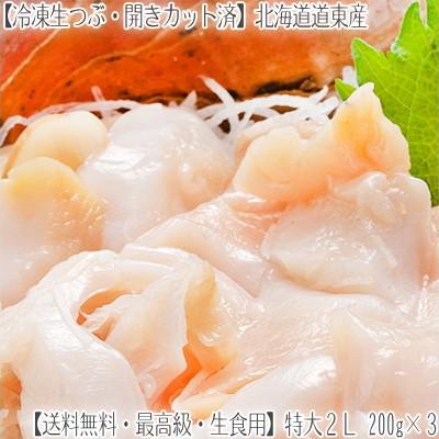 【つぶ貝 お刺身 北海道産】特大 2L 生冷凍 750g【250g×3 生食用・ツブ貝開き】道東産は甘み、コリコリ感が絶品【送料無料】エゾバイ貝