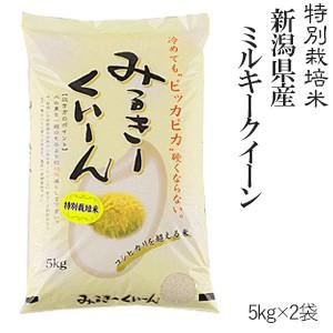 新潟産ミルキークイーン10kg(5kg×2袋) 特別栽培米 令和2年産 送料無料(一部地域のぞく)