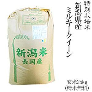 令和2年産 特別栽培米 新潟県産ミルキークイーン 玄米25kg 送料無料(一部地域を除く)