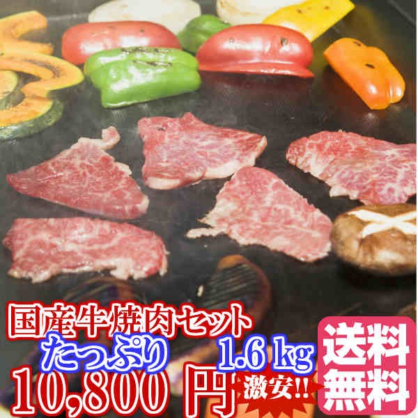国産牛豚焼肉セット1.6kg 冷凍便 ご自宅用 焼肉詰合せ 全国送料無料