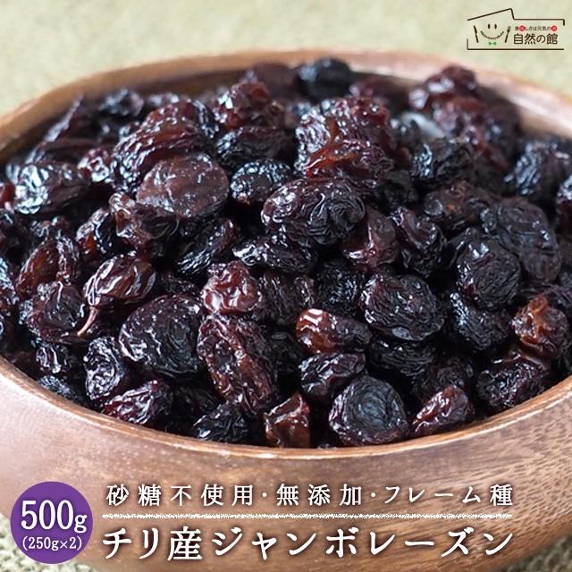 ジャンボレーズン 500g(250g×2) 送料無料 ドライフルーツ 砂糖不使用 無添加 レーズン 干しぶどう ブドウ ほしぶどう 非常食 保存食