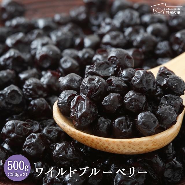 ワイルドブルーベリー 500g(250g×2) 送料無料 ドライフルーツ ルーツ 菓子材料 非常食 保存食