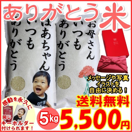 【ありがとう米5kg】米のギフト送料無料5 500円(北海道・九州・沖縄へは別途600円)母の日・誕生日・結婚式・内祝
