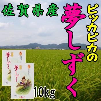 佐賀県産夢しずく10kg 5 500円 10k/米/お米