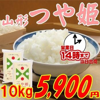 山形県産 つや姫 10kg 5 900円
