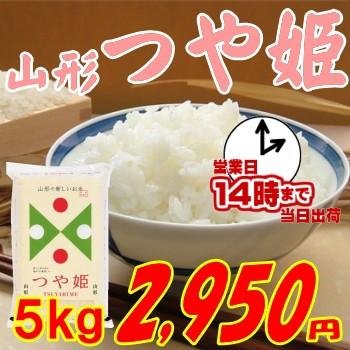 山形県産 つや姫 5kg 2 950円