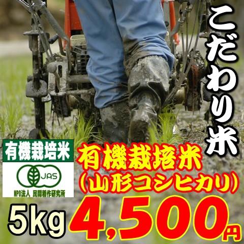【こだわり米】有機栽培米 5kg(山形県置賜産コシヒカリ) お米/送料無料/有機栽培米/程よい味