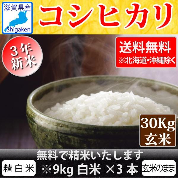 令和3年新米 滋賀県産コシヒカリ30kg玄米 精米無料【送料無料※一部地域除く】