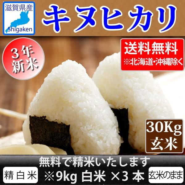 令和3年新米 滋賀県産キヌヒカリ30Kg玄米【精米無料】【送料無料※一部地域除く】