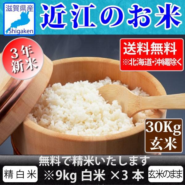 令和3年新米 近江のお米(滋賀県産100%)30Kg玄米【精米無料】【送料無料※一部地域除く】