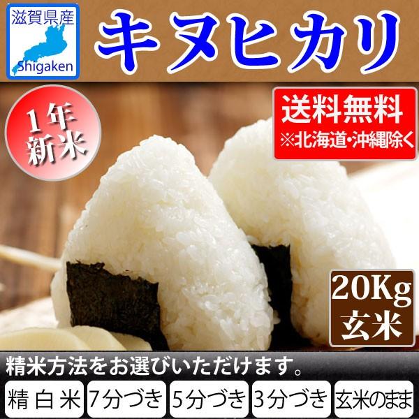 令和1年産 滋賀県産キヌヒカリ20Kg玄米(10Kg×2本)【精米方法選べます】【送料無料※北海道・沖縄・離島を除く】