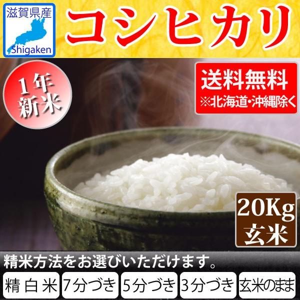 令和1年産 滋賀県産コシヒカリ20kg玄米(10Kg×2本)S【精米方法が選べます】【送料無料※北海道・沖縄・離島を除く】