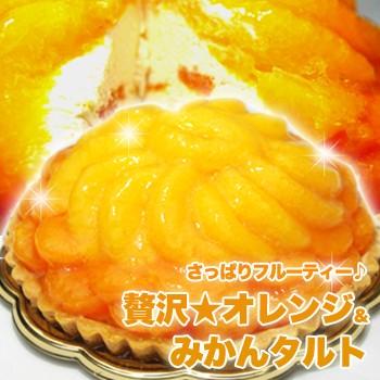 【送料無料】【同梱不可】さっぱりフルーティー 贅沢 オレンジ&みかんタルト (SM00010086)